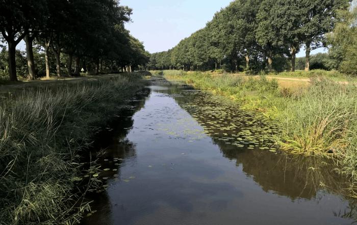 Wohnen in der Euregio Niederlande / Niedersachsen