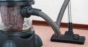 Teppichreinigung 310x165 - Teppich und Parkett in der Mietwohnung